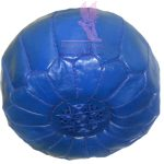 Blue Oasis Bean Bag
